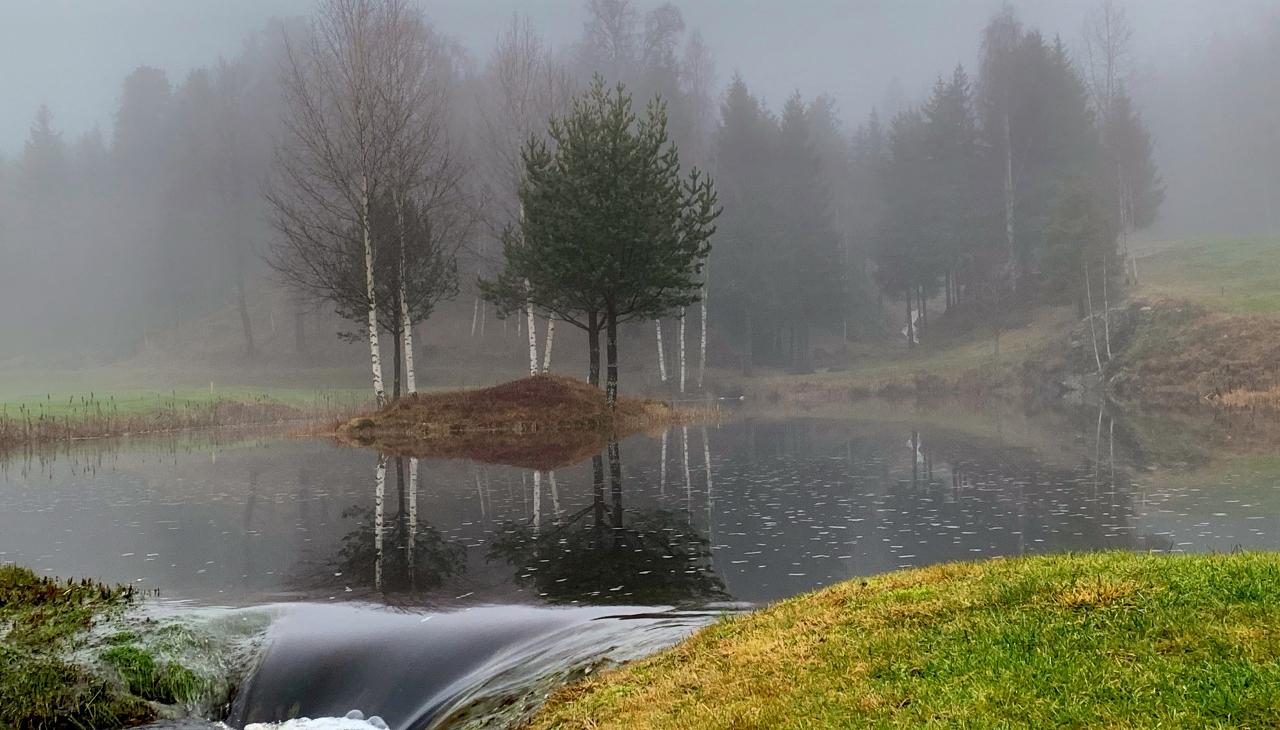 Regnet i går